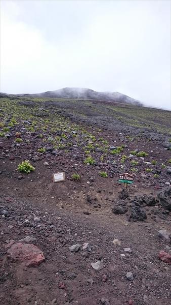 富士山トリプル024