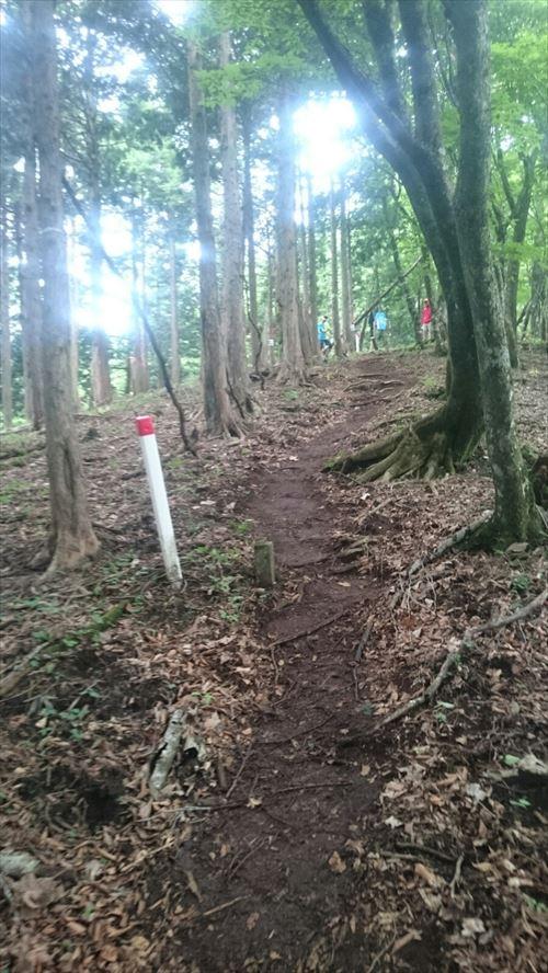北丹沢トレイル2017_008