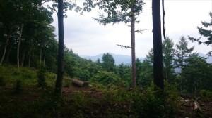 八重山トレイル6_R