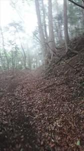 八重山トレイル