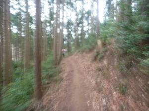青梅高水山トレイルラン7